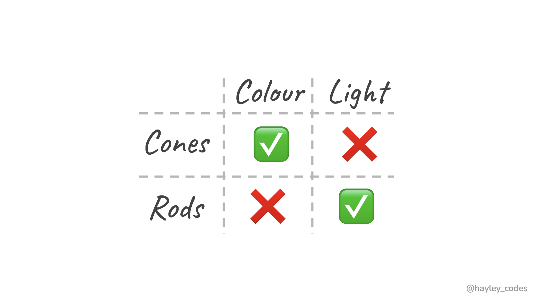 Table summarising cone and rod cells sensitivity to light and colour.